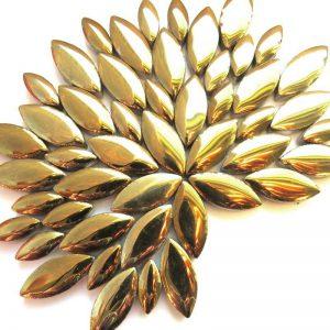 CO-002 Gold Petals